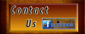 Contact-Us on facebook